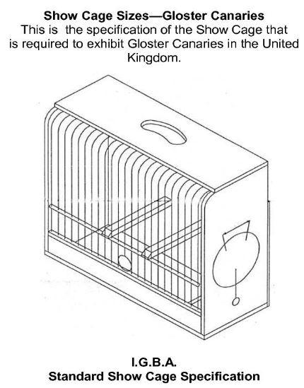 Εκθεσιακό κλουβί για Gloster